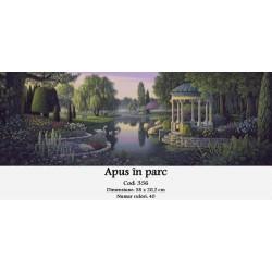 Apus in parc